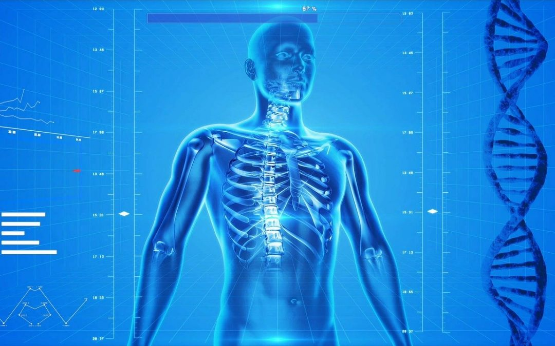 dos-colonne-vertebral