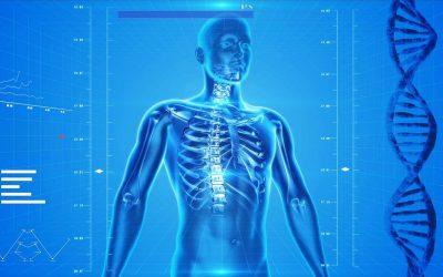 Le mal de dos, le nouvel mal du siècle