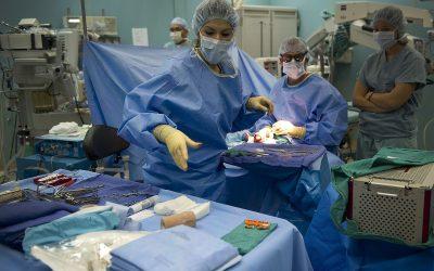 Les étapes de la préparation pour une opération chirurgicale